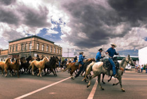 Three Forks, Montana horse roundup through town
